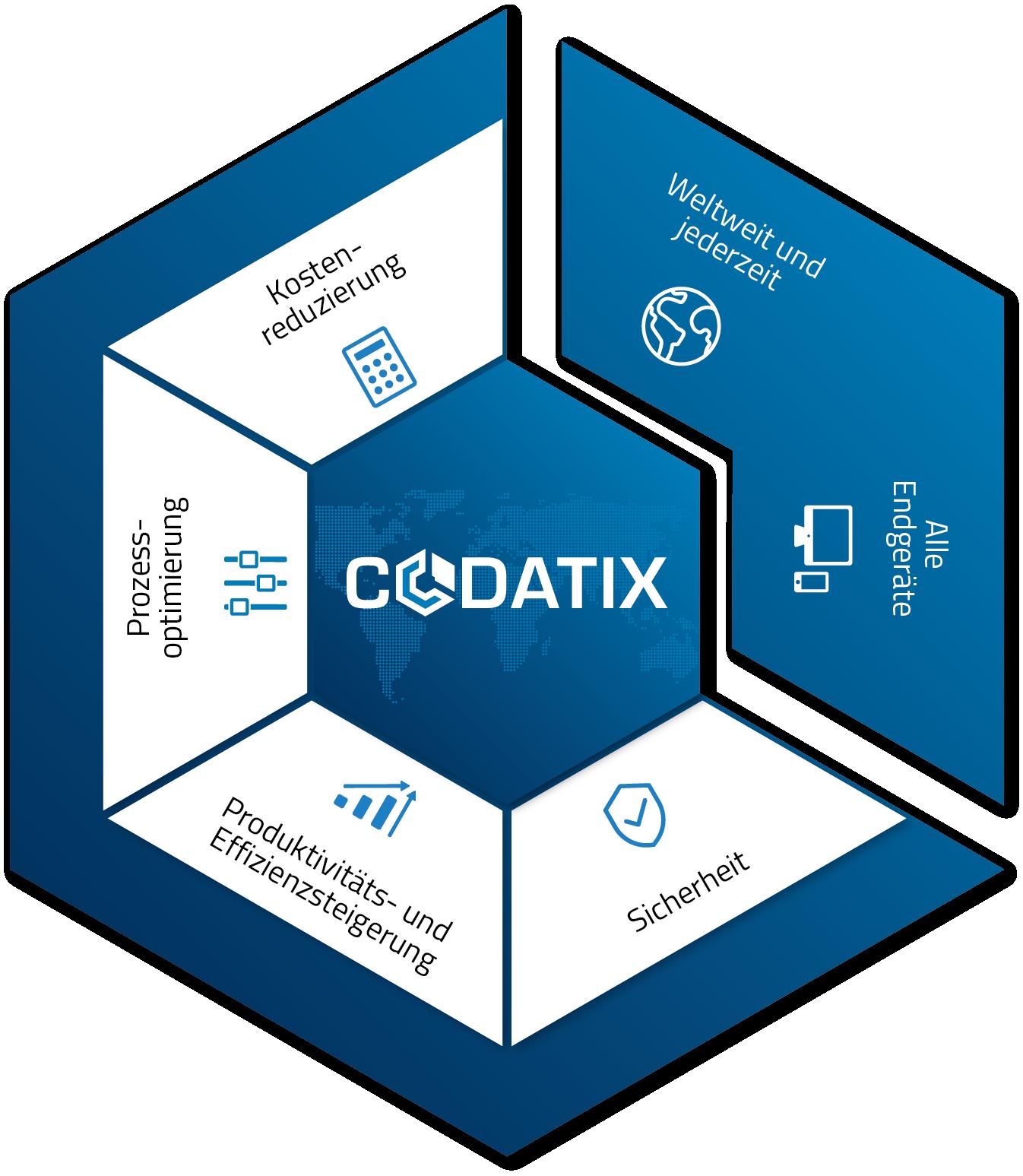 CODATIX_BigPicture_DE